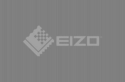 Eizo Monitortest - Gamma